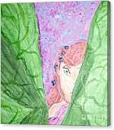 Peeking Fairy  Canvas Print