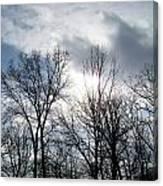 Peeking Sun Through The Branches Canvas Print