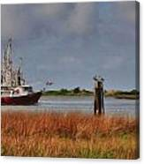Pelican And The Red Shrimpboat Canvas Print