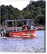 Pelicans Following Boat Canvas Print