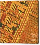 Pentium Computer Chip Canvas Print