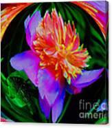 Peony Flower Energy Canvas Print