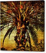 Perfect Palm Canvas Print