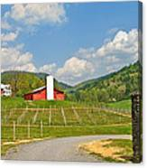 Persimmon Winery Canvas Print