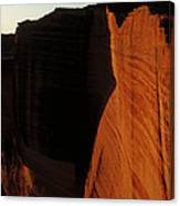 Person Standing Atop The Kings Canyon Canvas Print