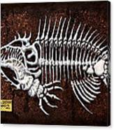 pescado Cuatro Canvas Print