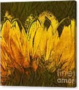 Petales De Soleil - A43t02b Canvas Print