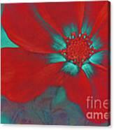 Petaline - T23b2 Canvas Print