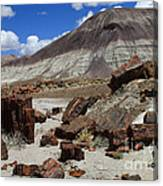 Petrified Forest 2 Canvas Print