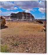 Petrified Forest Np Canvas Print