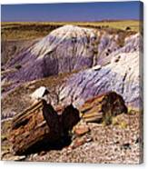 Petrified Logs In The Badlands Canvas Print
