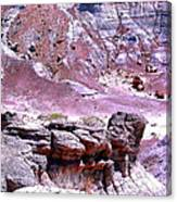 Petrified Wood In The Painted Desert Canvas Print