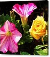 Petunias With A Rosy Neighbor Canvas Print