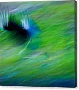 Phantom Flight Canvas Print