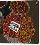 Philippines 3451 Everlasting Canvas Print