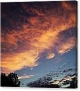 Phoenix In The Sky Canvas Print