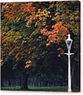 Phoenix Park, Dublin, Co Dublin Canvas Print