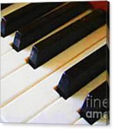 Piano Keys . V2 Canvas Print