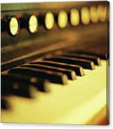Piano Keys And Buttons Canvas Print