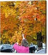 Picking Autumn Leaves 3982 Canvas Print