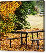Picnic Table With Autumn Leaves Canvas Print
