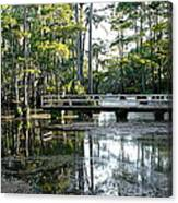 Pier In The Swamp Canvas Print