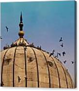 Pigeons Around Dome Of The Jama Masjid In Delhi In India Canvas Print