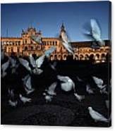 Pigeons Flutter Above The Plaza De Canvas Print