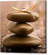 Pile Of Massage Stones Canvas Print