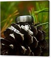 Pine Cone And Wedding Band Canvas Print