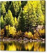 Pine Reflection At Georgetown Lake Colorado Canvas Print