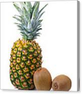 Pineapple And Kiwis Canvas Print