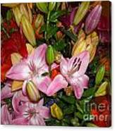 Pink And Color Lilies Canvas Print