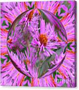 Pink Asters Energy Canvas Print