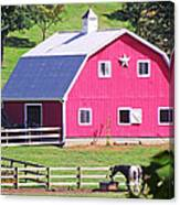 Pink Barn In The Summer Canvas Print