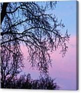 Pink Blue Sky Canvas Print