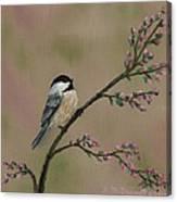Pink Bud Chickadees - Bird 1 Canvas Print