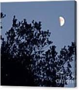 Pink Half Moon Photograph Canvas Print