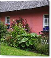 Pink Irish Cottage Canvas Print