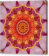 Pink Orchid Mandala-1 Canvas Print