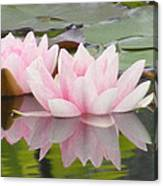 Pink Reflections Canvas Print