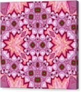 Pink Splash Mandala Abstract Canvas Print