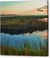 Pink Swamp Sunrise Canvas Print