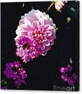 Pinkish Purplish Canvas Print