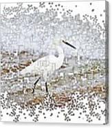 Pixel Cowbird Canvas Print
