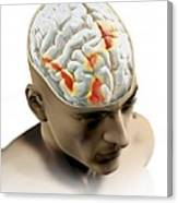Placebo Effect In The Brain, Artwork Canvas Print