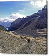 Plain Of Six Glaciers Trail - Lake Louise Canada Canvas Print