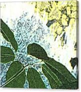 Plant Life Inside-outside Canvas Print
