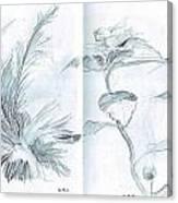 Plant Sketches Canvas Print