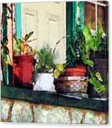 Plants On Porch Canvas Print